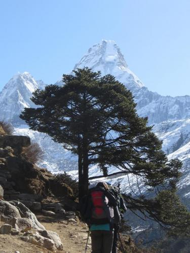 Everest Region. Ama Dablam